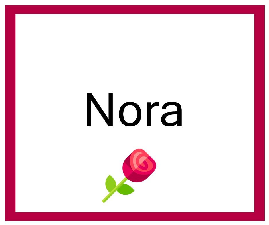 Combinaciones de Nombres Nora - Niña